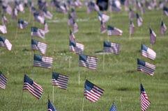 De Vlaggen van de veteraan stock fotografie