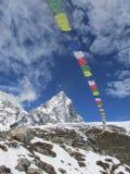 De vlaggen van het gebed in het Himalayagebergte Stock Afbeeldingen
