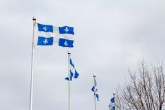 De vlaggen van Quebec in de stad van Quebec, QC, Canada Stock Fotografie