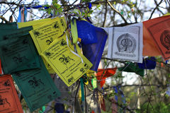 De vlaggenlungta van het boeddhismegebed met om mantra van het mani padme gezoem Royalty-vrije Stock Fotografie