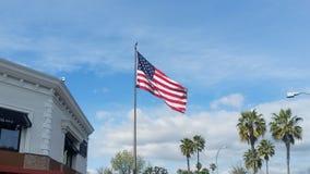 De Vlaggolven van de V.S. stock afbeelding