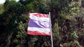 De vlagslagen van Thailand in een sterke wind stock video