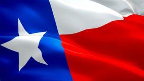 De vlagvideo die van Texas in wind golven Realistische de Vlagachtergrond van de Staat Texas Flag Looping-close-up1080p Volledige stock footage