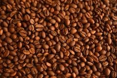 De vlakke achtergrond van koffiebonen Stock Fotografie