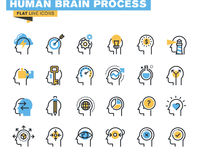 De vlakke reeks van lijnpictogrammen van menselijk hersenenproces