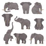 De vlakke vectorreeks olifanten in verschillend stelt Afrikaan van Aziatische dieren met grote oren en lange boomstammen wildlife royalty-vrije illustratie