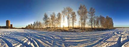 De vlakte van de winter Stock Foto's