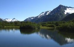 De Vlakten van Amerikaanse elanden, Alaska stock foto