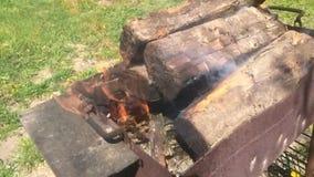 De vlam stock video