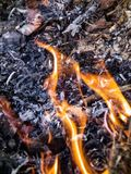 De vlam is de macht van het branden in wildernis Stock Afbeelding