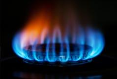 De vlam van de het gasbrand van het fornuis Stock Fotografie