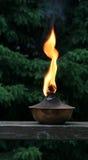 De Vlam van de toorts Royalty-vrije Stock Afbeelding