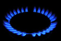 De vlam van het Aardgas van het fornuis Stock Foto