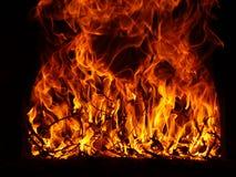 De vlammen van de brand Stock Afbeelding