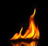 De Vlammen van de brand/met bezinning Stock Foto