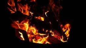 De Vlammen van de kampbrand stock video