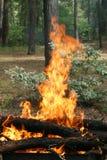 De vlammen van de vuurbrand Royalty-vrije Stock Afbeeldingen