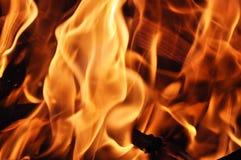 De Vlammen van het kampvuur Stock Foto