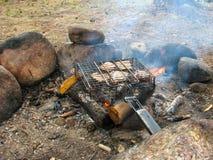 De vleesbarbecue in de grill wordt binnen geroosterd op de brand in een bos stock foto's