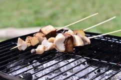 De vleespen van de barbecue Stock Afbeelding