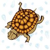 De vlekglas van de schildpad oceaan wild stencil Royalty-vrije Stock Afbeeldingen