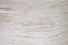 De vlekken van de lichaamsolie, geuren en vlekken, ander vuil op wit beddegoedblad Royalty-vrije Stock Foto's