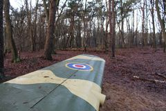 De vleugel van een vliegtuig in een bos Stock Fotografie