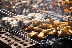 De vleugels van de kip op de grill en het varkensvlees Royalty-vrije Stock Afbeelding