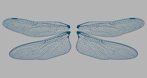 De vleugelsdetails van Damselfly vector illustratie