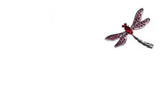 De vlieg van de draak Stock Afbeeldingen