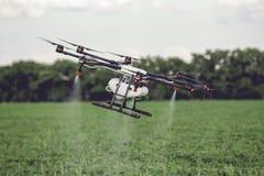 De vlieg van de landbouwhommel aan bespoten meststof op de padievelden stock afbeelding