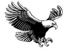 De vliegende adelaar spreidde de vleugels uit vector illustratie