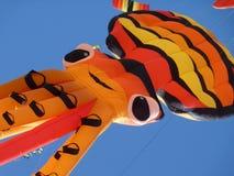 De Vlieger van de tijger Stock Foto