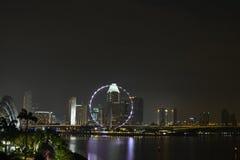 De vlieger van Singapore bij nacht Stock Afbeeldingen