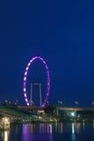 De vlieger van Singapore onder de schemering Stock Afbeelding