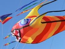 De Vlieger van vissen stock foto