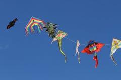 De vliegers fladderen vrije hoogte in hemelblauw Stock Foto's