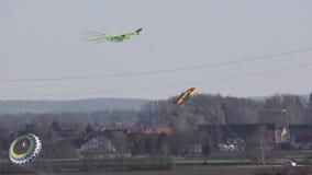 De vliegers stijgen hoog in de hemel stock videobeelden