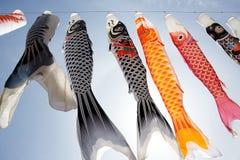 De vliegerwimpel van de Apanesekarper Stock Fotografie