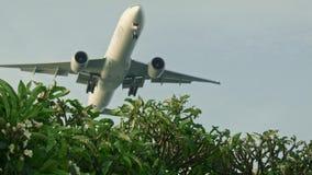 De vliegtuig lage vliegen stock footage