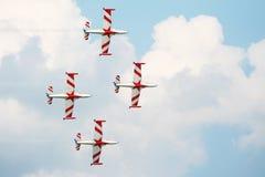 De Vliegtuigen van Airshow op hemel Stock Afbeelding