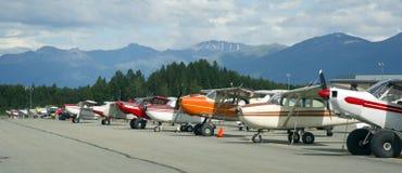De vliegtuigen van de struik Royalty-vrije Stock Afbeeldingen