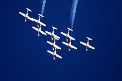 De Vliegtuigen van de Stunt van Snowbird Royalty-vrije Stock Foto's