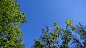 De vliegtuigvliegen door de bomen stock video