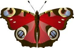 De vlinder Aglais van het pauwoog io, Inachis io, Nymphalidae Blauwe, gele, rode kleuren stock illustratie