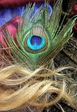 De vlinder en het haar van de pauw Stock Foto