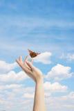De Vlinder in uw handen stock foto