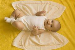 De vlinder van de baby Stock Afbeelding