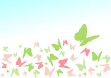 De vlinder van de kleur Stock Afbeelding