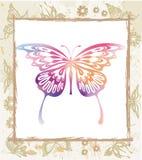 De vlinder van de kleur in een frame Stock Foto